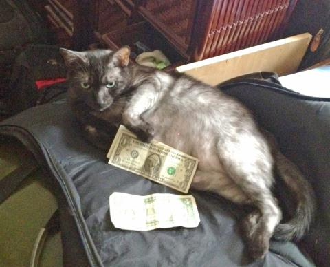 Lola guarding Charles' money