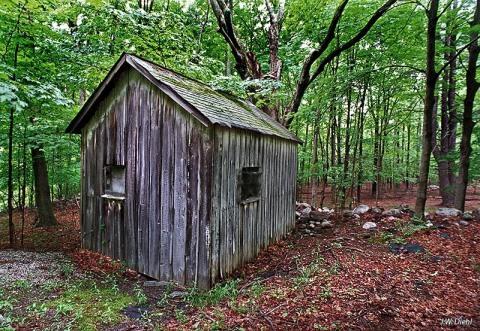wallkill_cabin